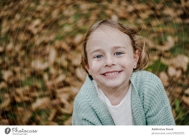 Smiling girl between meadow with dry leaves Girl Meadow Leaf Dry Child Positive Field Nature Beautiful Woman Infancy Freedom Park Happiness Joy Lifestyle Rural