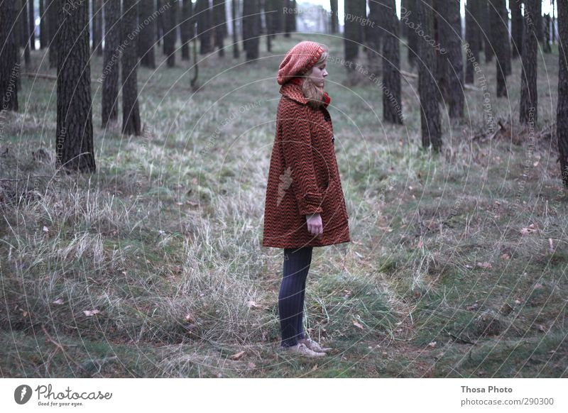 Little Red Riding Hood Body Hiking Loser Environment Nature Looking Stand Dream Sadness Wait Free Fashion Forest Tights Cap Coat Green Gray Grass Blonde trees