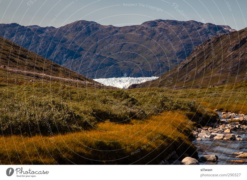 Green(glacier)land Landscape Water Autumn Beautiful weather Grass Bushes Hill Mountain Glacier Fjord River Far-off places Gigantic Thorny Yellow White