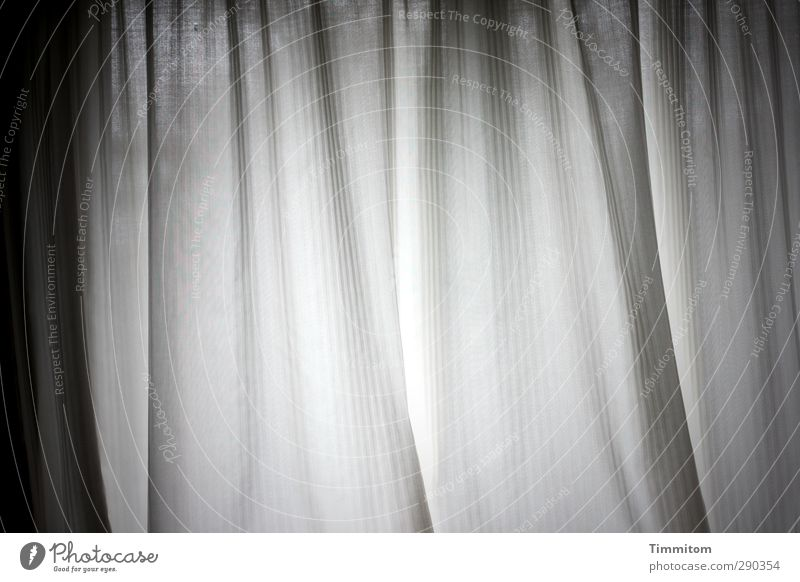 Calm Emotions Gray Line Esthetic Observe Simple Drape Folds