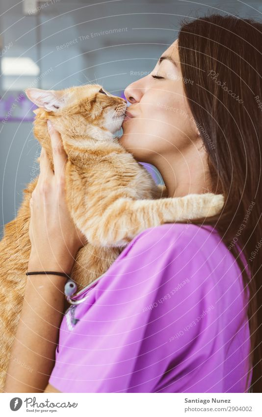 Veterinarian doctor kissing a little cat. Cat veterinary clinic Animal Doctor Nurse Healthy Pet Uniform Professional Work and employment