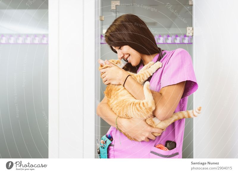 Veterinarian doctor hugging a little cat. Cat veterinary clinic Animal Doctor Nurse Healthy Pet Uniform Professional Work and employment