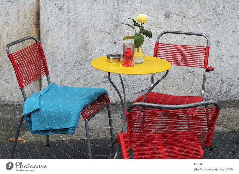 Vacation & Travel Flower Wall (building) Eating Wall (barrier) Facade Metal Tourism Decoration Table Joie de vivre (Vitality) Chair Furniture Bouquet Smoking