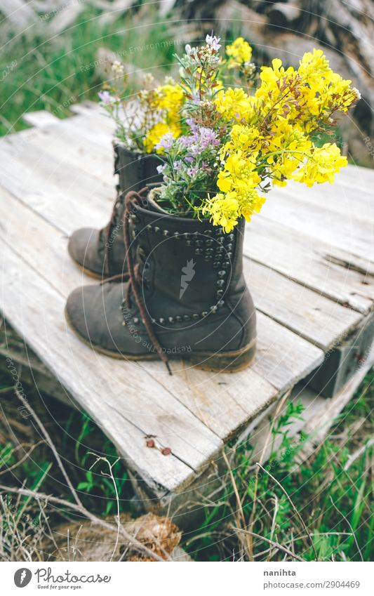 Boots filled with wildflowers Environment Nature Plant Spring Summer Flower Grass Blossom Wild plant Pot plant Leather Wood Blossoming Old Fresh Cheap Beautiful