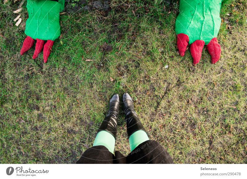 I dare you. Human being Legs Feet 1 Environment Nature Grass Park Meadow Skirt Tights Footwear Boots Animal Stand Toenail Dragon Dinosaur Knit Colour photo