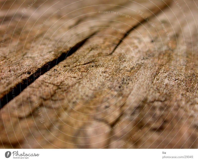 wood Wood Dry Tree trunk Wood grain Crack & Rip & Tear Macro (Extreme close-up)