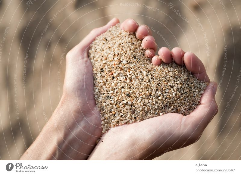 Hand Ocean Loneliness Beach Love Happy Sand Brown Gold Heart Esthetic Romance Sign To hold on Infatuation Positive