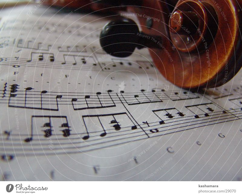 Violin Game I Music Musical notes Wood Brown Viola Song Classical Musical instrument string Make music Colour photo Interior shot Detail Deserted
