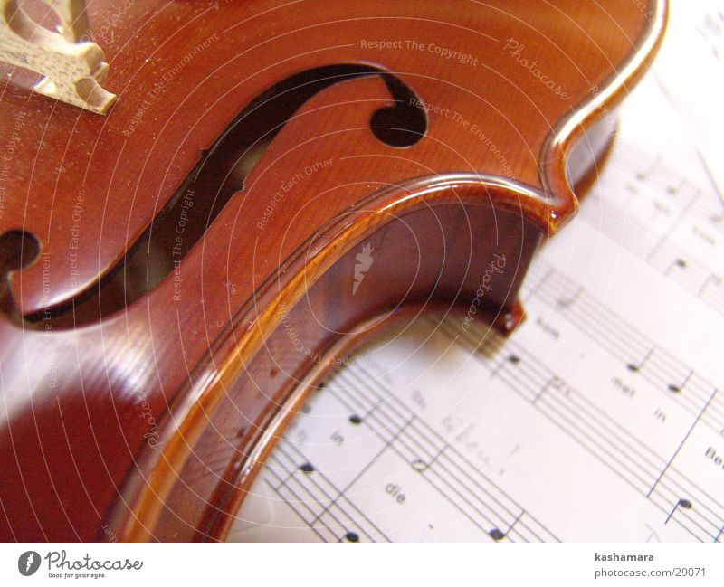 Violin Game II Music Musical notes Wood Brown Viola Song Classical Sound Musical instrument string Make music Colour photo Interior shot Detail Deserted
