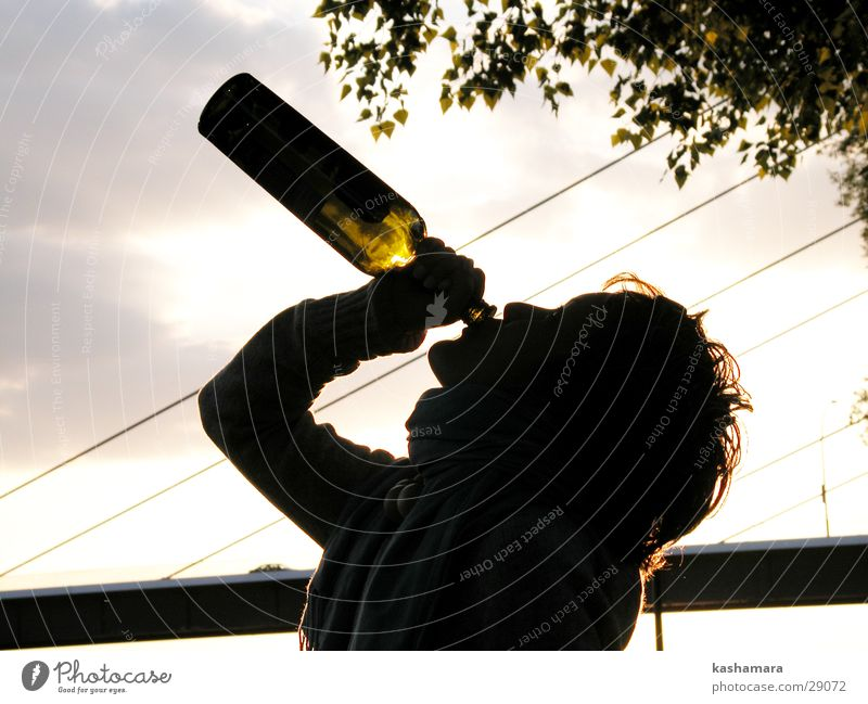 Human being Woman Youth (Young adults) Adults Threat 18 - 30 years Drinking Wine Young woman Bottle Alcohol-fueled Alcoholic drinks Distress Shame Vice Alcoholism