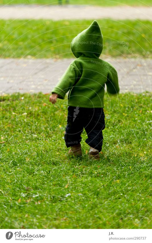 Child Green Joy Meadow Life Grass Playing Spring Happy Small Healthy Natural Park Infancy Walking Growth