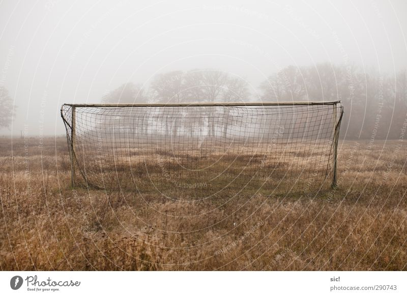 Loneliness Yellow Meadow Autumn Sports Grass Gray Brown Leisure and hobbies Fog Soccer Foot ball Net Athletic Village Steel