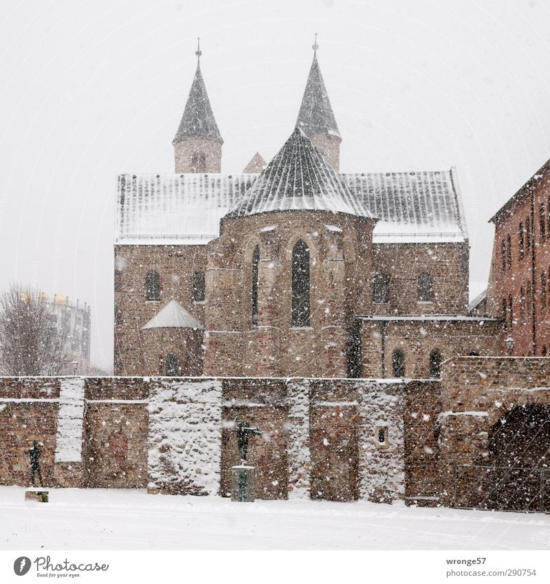 City Winter Architecture Snowfall Brown Art Germany Europe Manmade structures Monument Downtown Museum Tourist Attraction Old town Exhibition Magdeburg