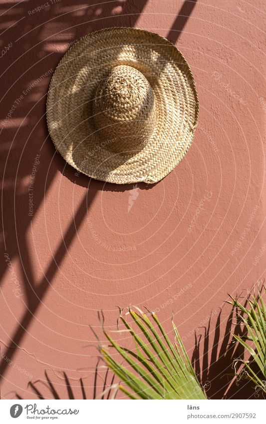 shade provider Straw hat Hat Wall (building) Palm tree Light Shadow Morocco