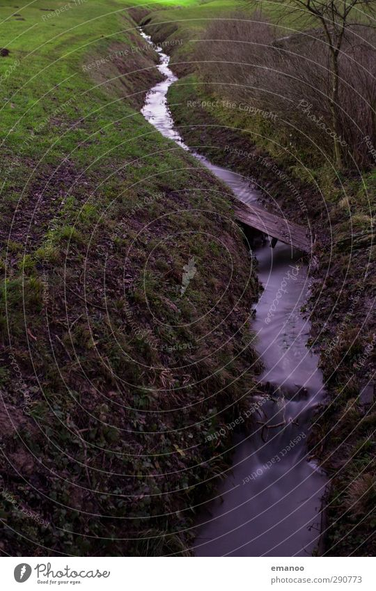 CUT IN. Environment Nature Landscape Water Climate Plant Tree Grass Bushes Garden Meadow Field Hill Brook River Waterfall Bridge Green Cut Flow Small Irrigation