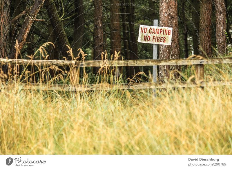 No camping & no fire = -( Vacation & Travel Adventure Freedom Camping Hiking Nature Landscape Plant Animal Spring Summer Autumn Tree Grass Bushes Meadow