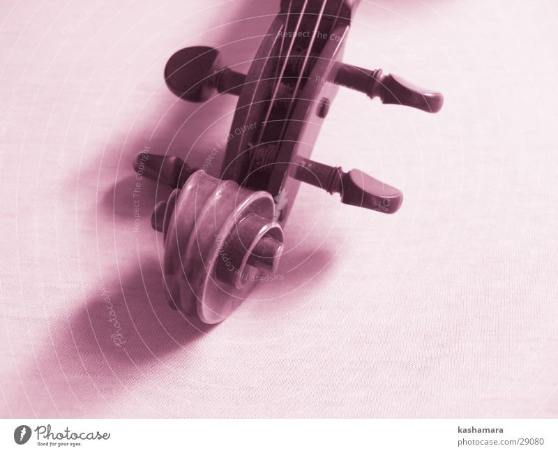 Pink Violin II Playing Music Concert Orchestra Musical notes Wood Violet Interior shot