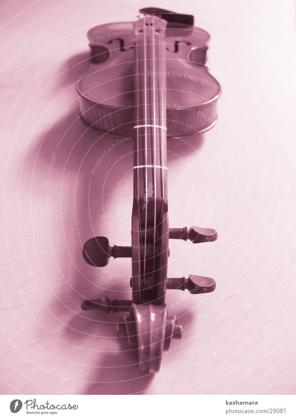 Playing Music Wood Pink Violet Concert Musical notes Violin Orchestra