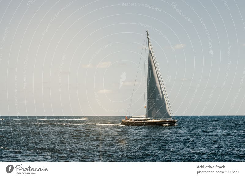 Sailboat in the meddle of the sea Vessel Yacht Spinnaker Regatta Navigation Nautical Mast Watercraft Sports Leisure and hobbies Horizon Row Blue Transport