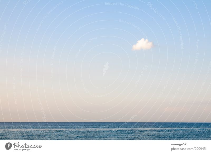 Small cloud Vacation & Travel Far-off places Freedom Summer Summer vacation Ocean Waves Nature Water Sky Clouds Horizon Baltic Sea Wanderlust Colour photo