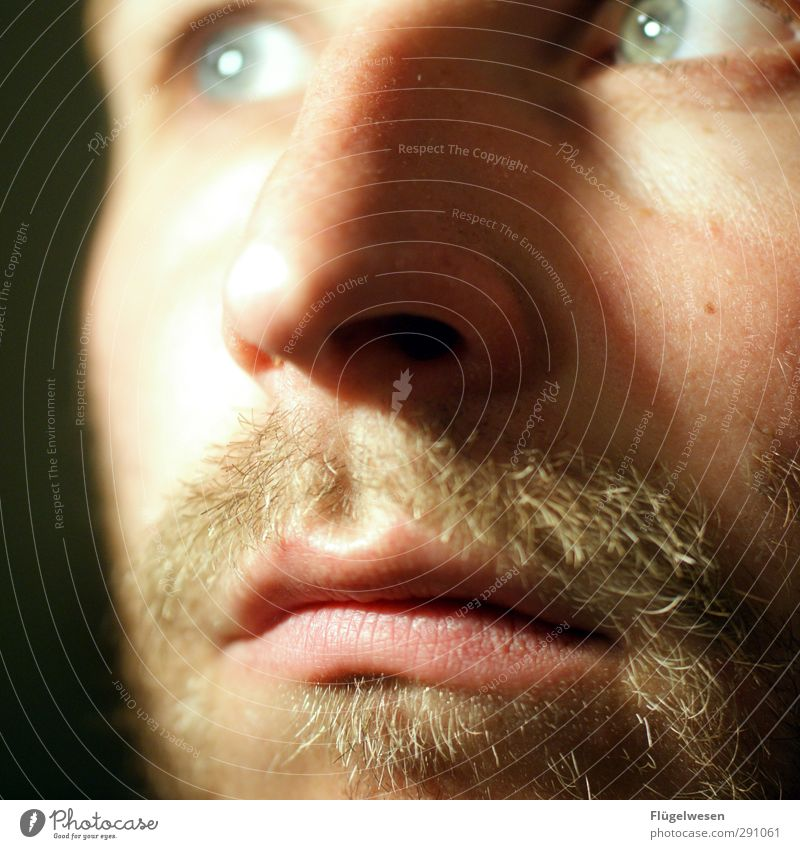 three-day beard Human being Masculine Head Facial hair 1 18 - 30 years Youth (Young adults) Adults Wait Sustainability Natural Spring fever Sadness Concern