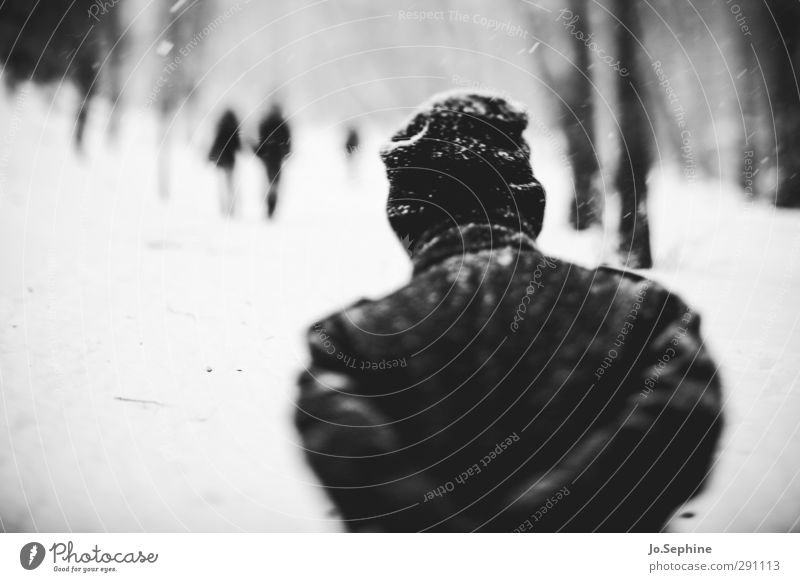 colder Winter Weather Snow Snowfall Human being To go for a walk Forest Coat Cap Going Walking Seasons blurred vision Cold lensbaby Black & white photo