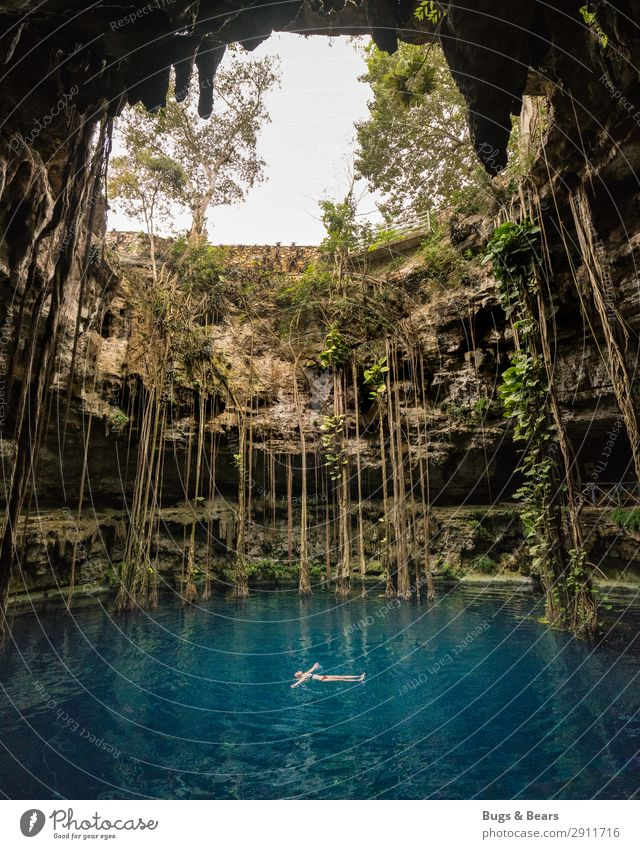 Cenote, Yucatan Feminine Environment Nature Plant Water Summer Foliage plant Virgin forest Canyon Pond Lake Oasis To enjoy Adventure Discover Relaxation