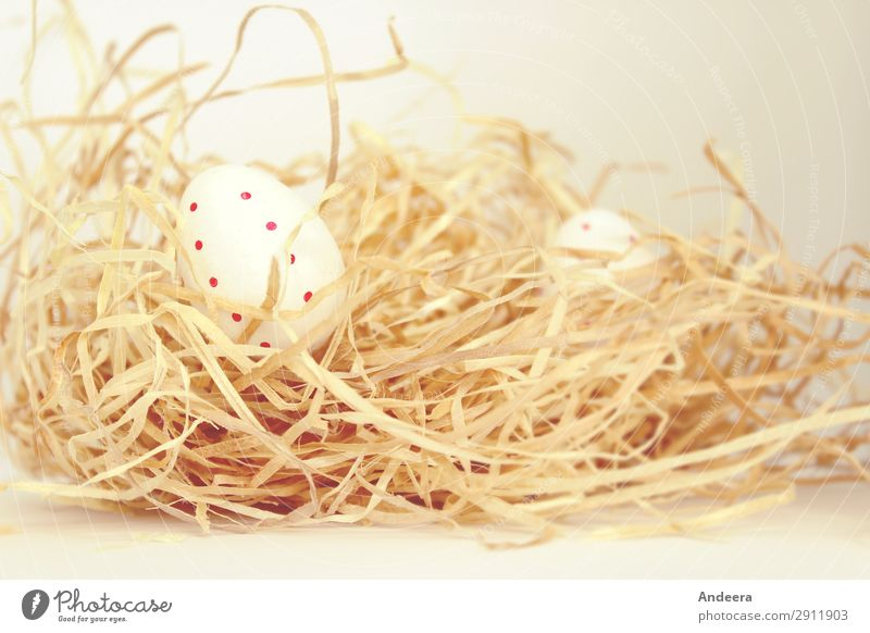 White Easter eggs with red dots in straw Decoration Blonde Bright natural Round Dry Calm Beginning Religion and faith Egg Straw Spotted Point Colour photo