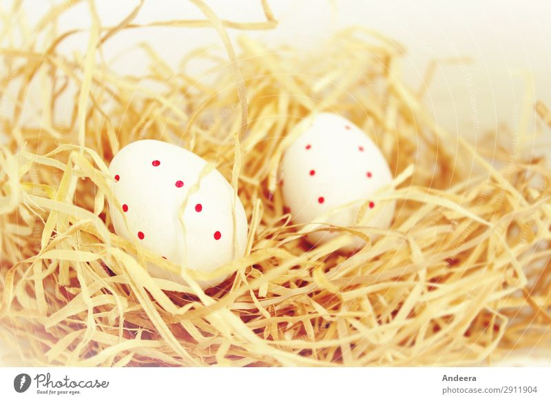 Two white Easter eggs with red dots in the straw spring Decoration Religion and faith Bright Beige Pastel tone Egg Point Spotted Straw Lie Calm Public Holiday