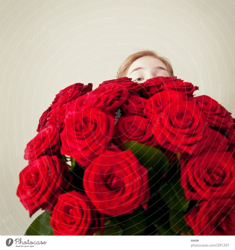 Human being Youth (Young adults) Beautiful Red Flower Love Feminine Happy Head Feasts & Celebrations Birthday Lifestyle Wedding Gift Romance Rose