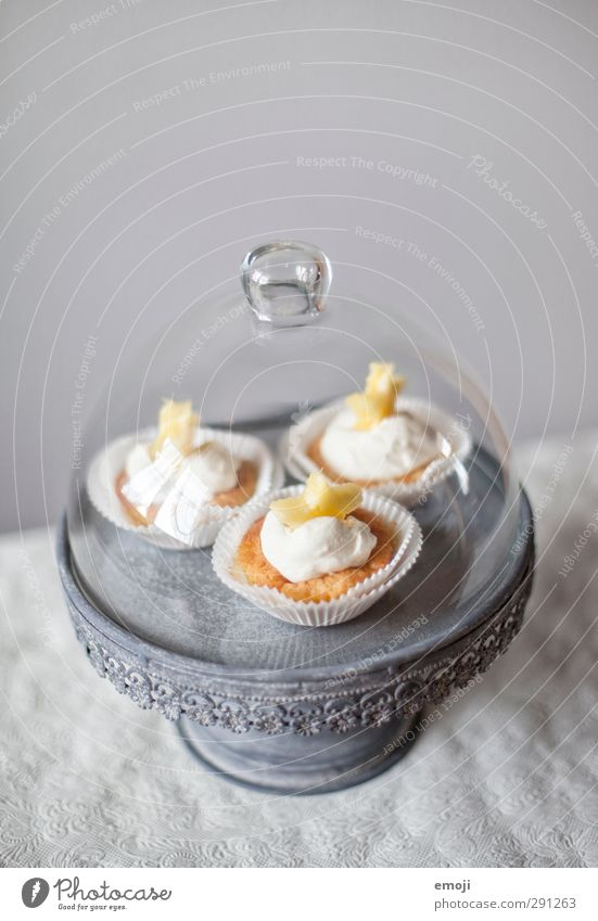 cute Dessert Candy Nutrition Finger food Crockery Bowl Delicious Sweet Muffin Cupcake Cake plate Colour photo Interior shot Deserted Copy Space top