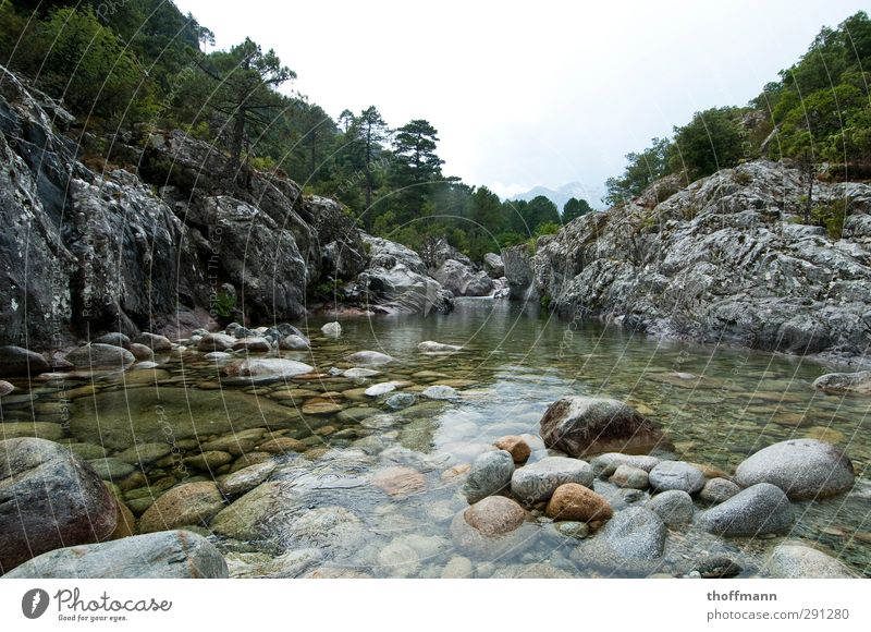 Corsica France Vacation & Travel Travel photography Stone Water Tree Rock River Body of water Mountain Valley Swimming & Bathing Float in the water Wet Cold