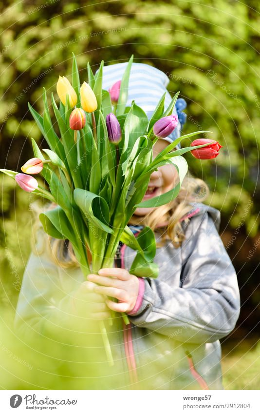 Flowers on Mother's Day Human being Child Girl 1 3 - 8 years Infancy Tulip Multicoloured Joy Happy Happiness Spring fever Bouquet Tulip blossom Spring colours