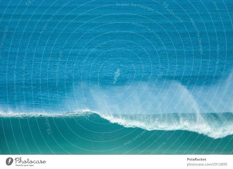 #A# Wavebeat Art Esthetic Waves Swell Ocean Surfing Surfer Surfboard Surf school Fuerteventura Colour photo Multicoloured Interior shot Studio shot Close-up