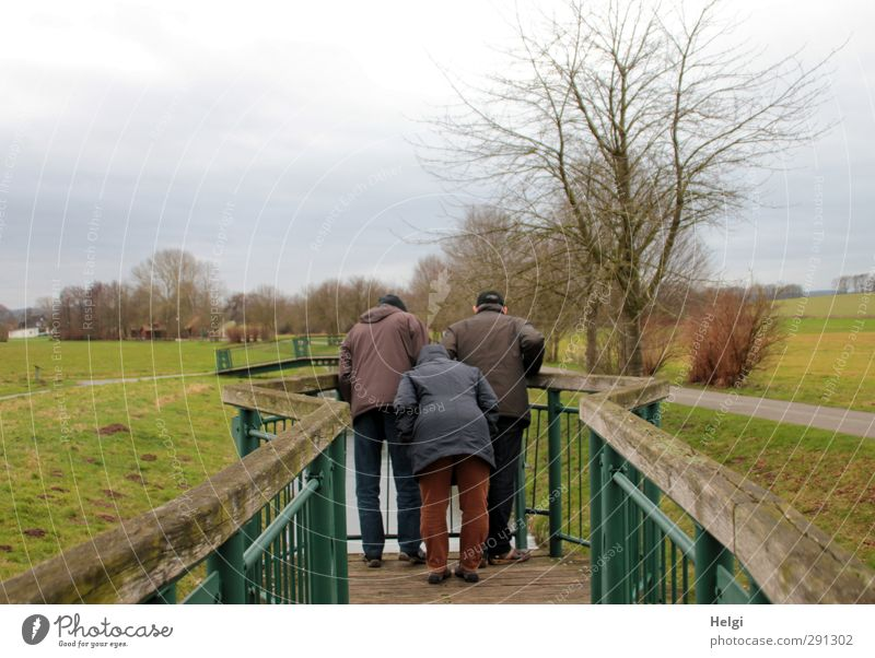 Rear view of three people looking over a railing into a small river Winter Human being Masculine Feminine Woman Adults Man Female senior Male senior