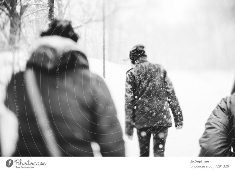 coldest To go for a walk Winter Seasons Weather Snowstorm Snowfall Adults Rear view Coat Cap Going Walking Cold Gloomy lensbaby Black & white photo