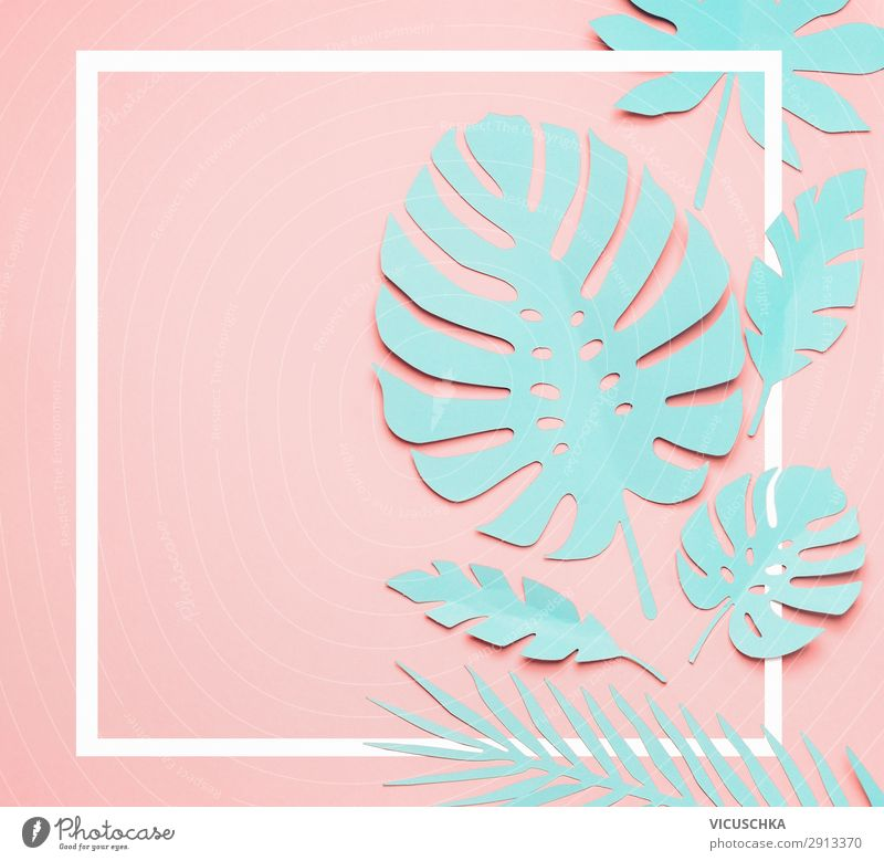 Turquoise tropical leaves frame Style Design Exotic Summer Decoration Nature Plant Leaf Fashion Hip & trendy Beautiful Pink Surrealism Background picture