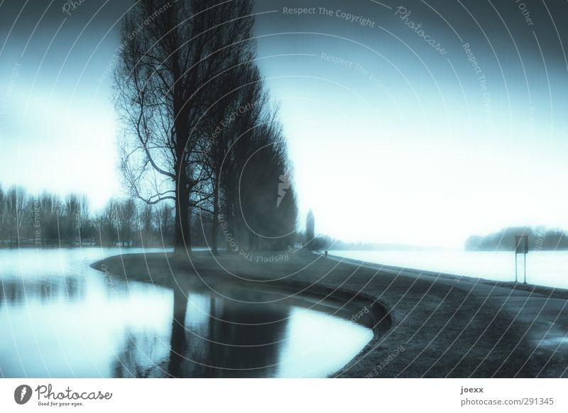 Nature Blue Water White Tree Calm Landscape Black Cold Lanes & trails Fog Large Idyll River bank Bad weather