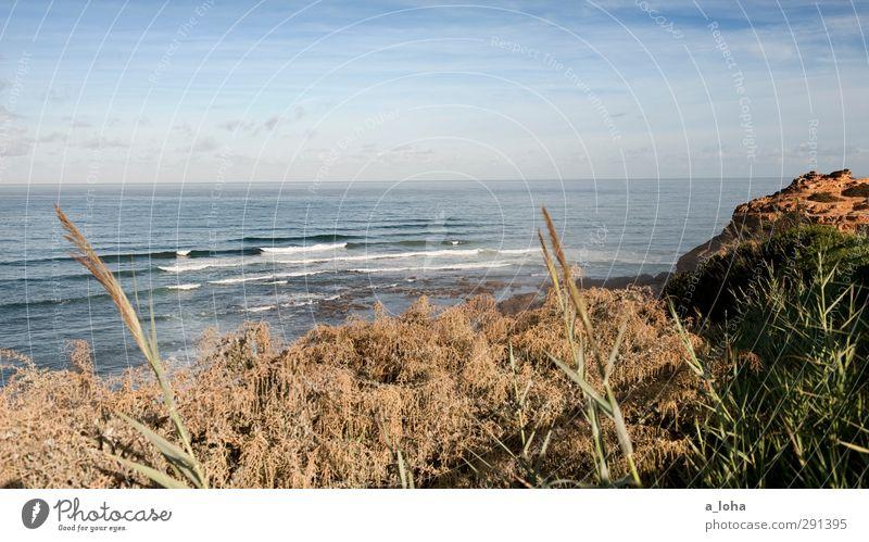 sao juliao daytime Environment Nature Landscape Plant Elements Water Sky Clouds Horizon Summer Beautiful weather Grass Bushes Rock Waves Coast Beach Ocean