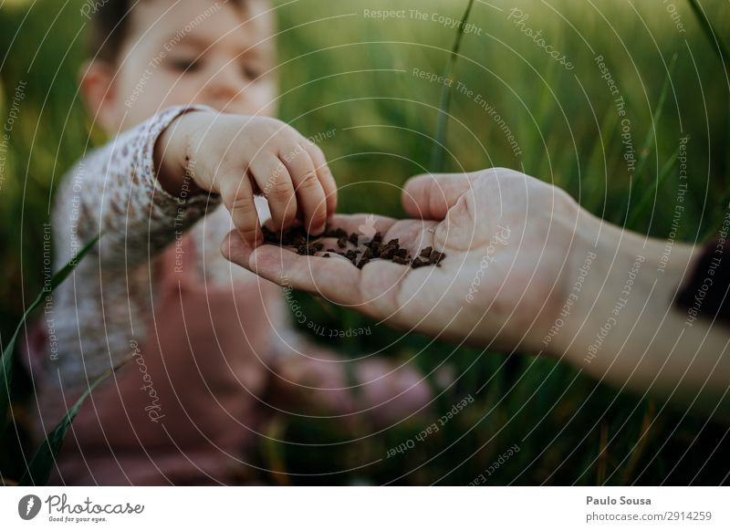 Child touching soil in mothers hand Lifestyle Human being Baby Girl Mother Adults Hand 1 1 - 3 years Toddler Environment Nature Summer Touch Discover To enjoy
