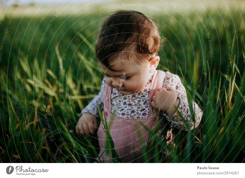 Baby in nature Lifestyle Vacation & Travel Human being Child Toddler Girl 1 1 - 3 years Environment Nature Summer Field Movement Discover Happiness Fresh Happy