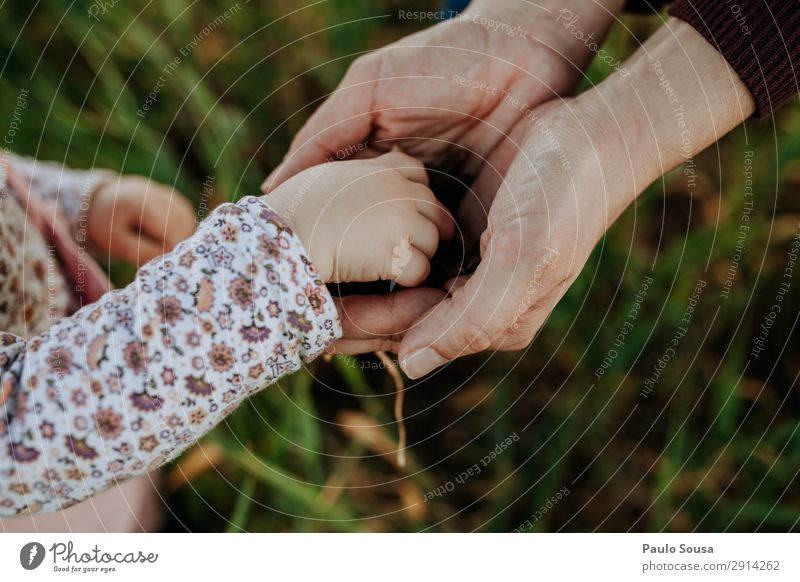 Daughter and Mother hands Lifestyle Parenting Human being Baby Toddler Girl Adults Hand 1 - 3 years 18 - 30 years Youth (Young adults) Environment Nature Field