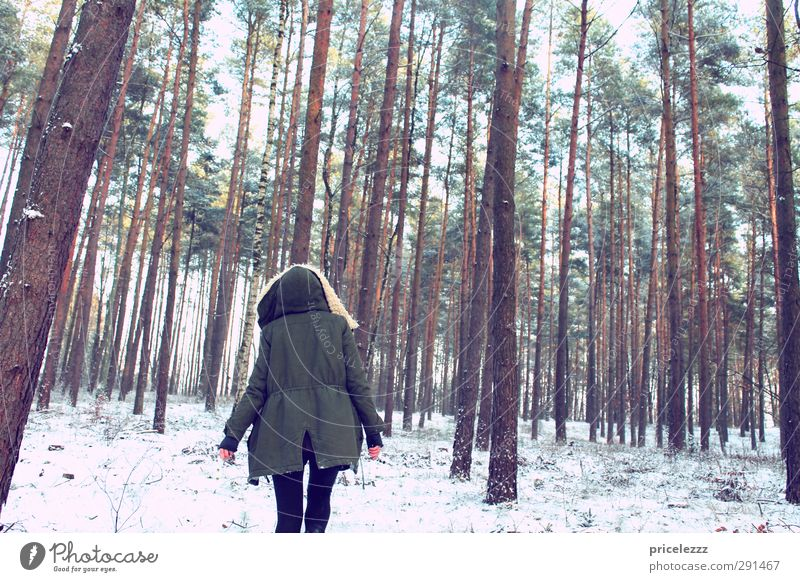 I walked in the woods... To go for a walk Feminine Young woman Youth (Young adults) Body Back 1 Human being Nature Winter Ice Frost Snow Parka Hooded (clothing)