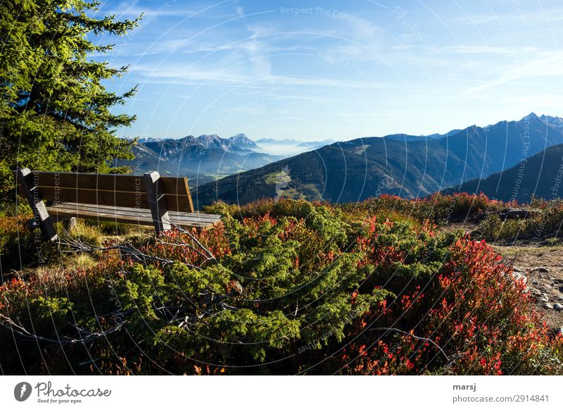 A place to dream Relaxation Calm Meditation Nature Autumn Alps Mountain Bench Wanderlust Loneliness Vantage point Far-off places Colour photo Multicoloured