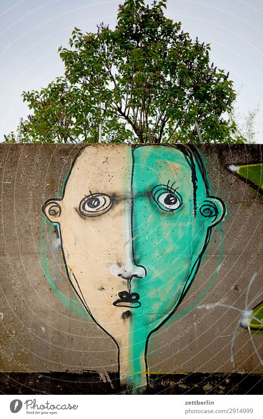 Nature Summer Tree Face Graffiti Spring Art Copy Space Branch Illustration Twig Painting and drawing (object) Treetop Drawing Street art Mural painting