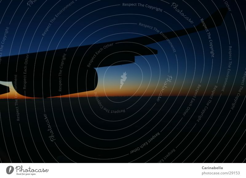 horizon Horizon Sunrise Morning Aviation Wing Dawn nozzle