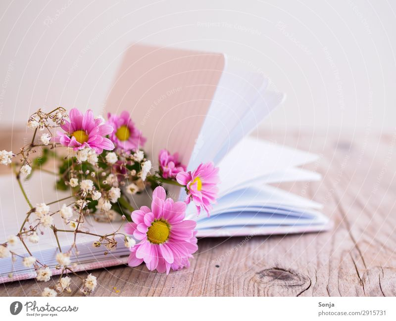 Spring flowers on a book Lifestyle Mother's Day Birthday Flower Blossom Book Diary Bouquet Fragrance Lie Fresh Beautiful Pink Spring fever Creativity