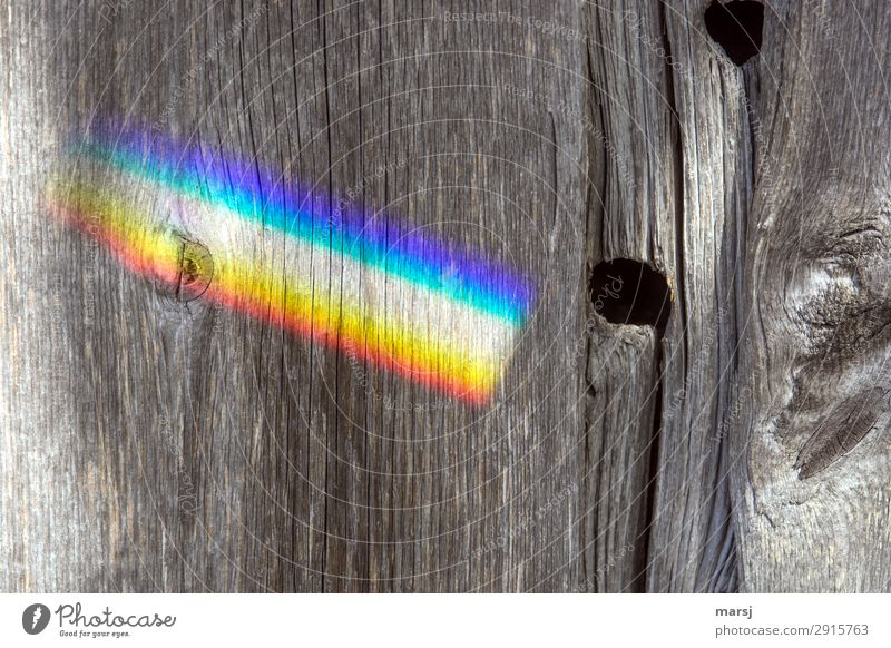 Rainbow on old wooden wall Wood grain Knothole Prismatic colors Illuminate Authentic Kitsch Multicoloured Strange Old Wooden board Patina deceased Past