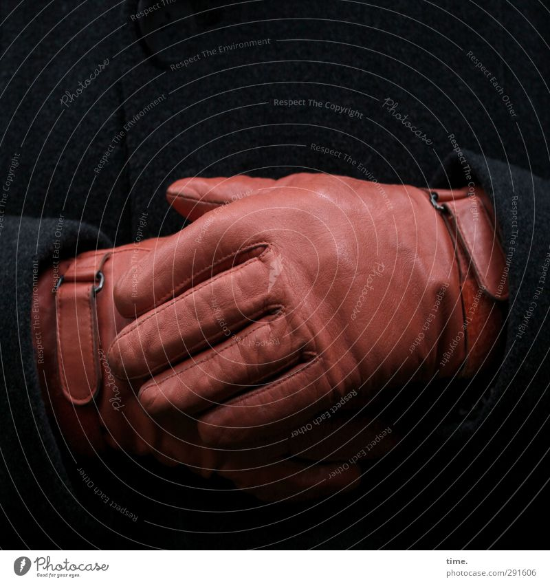 Real Style Human being Hand Fingers 1 Protective clothing Coat Cloth Leather Gloves Buckle Textiles To hold on Esthetic Brown Black Responsibility Caution