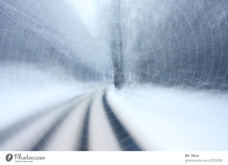 on winter I Environment Nature Climate Ice Frost Snow Traffic infrastructure Motoring Street Lanes & trails Driving Alcoholism Speed Cold Forest Winter Tracks